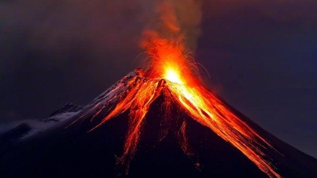 Новые доказательства: появление динозавров обеспечили вулканы