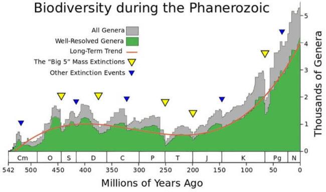 Когда нас ждет массовое вымирание? (7 фото)