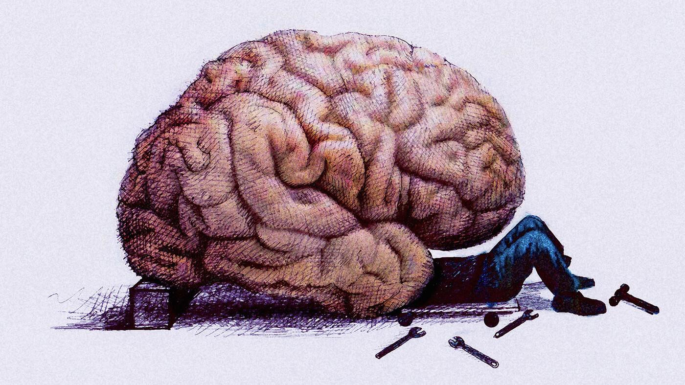 Ученые определили 22 гена, связанных с интеллектом