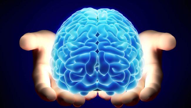 Картинки по запросу мозг формируется после рождения