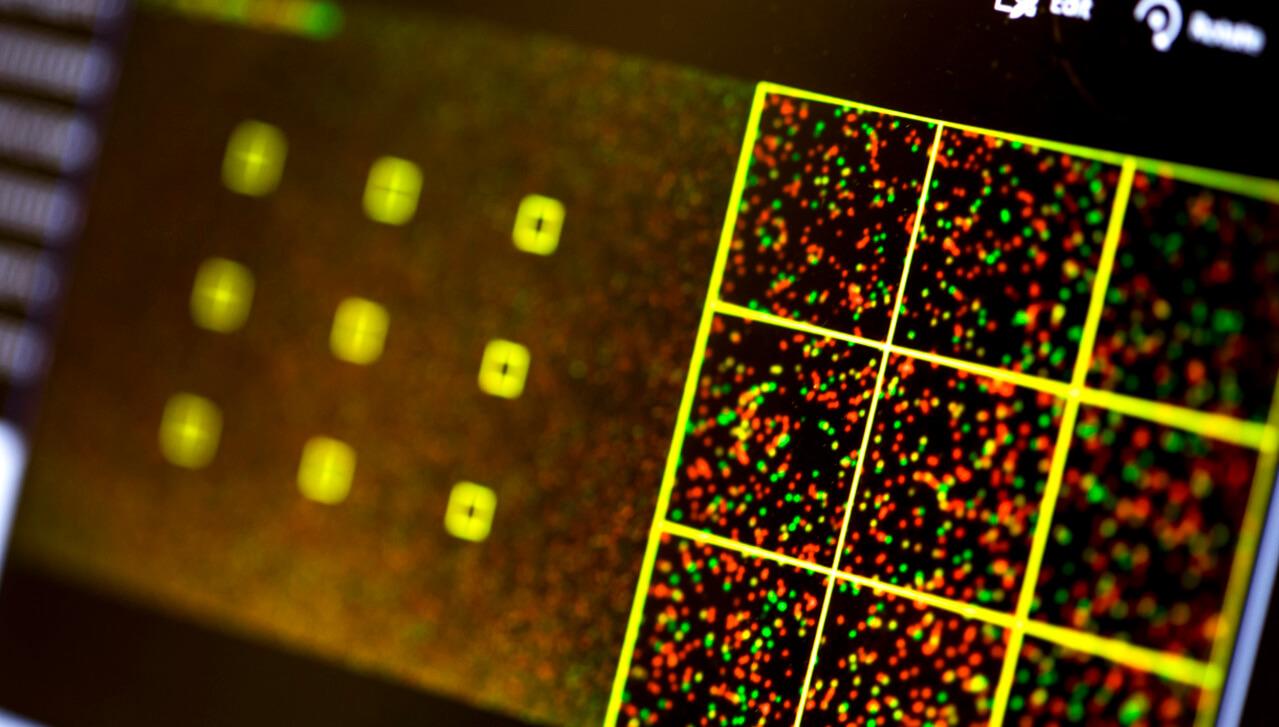 Вредоносный код, записанный в ДНК, способен заражать компьютеры
