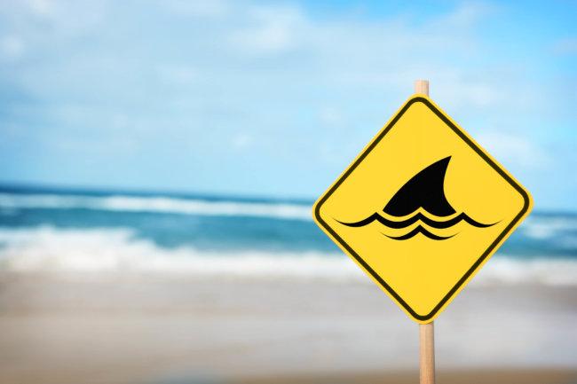 Дроны будут отслеживать акул напляжах Австралии