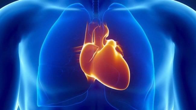 «Заплатки» для сердца будут печатать на 3D-принтере (2 фото)