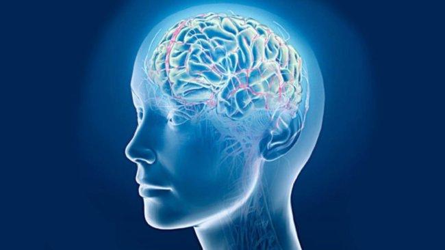 Нейросеть научили «читать мысли»