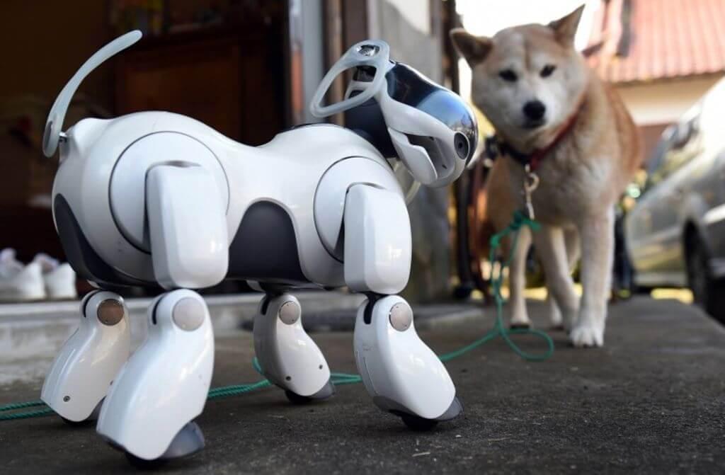 Sony выпустит обновлённую версию легендарного робота Aibo