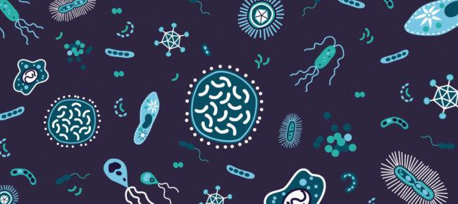 10 секретов науки, которые сделают вас бессмертным уже в этом столетии