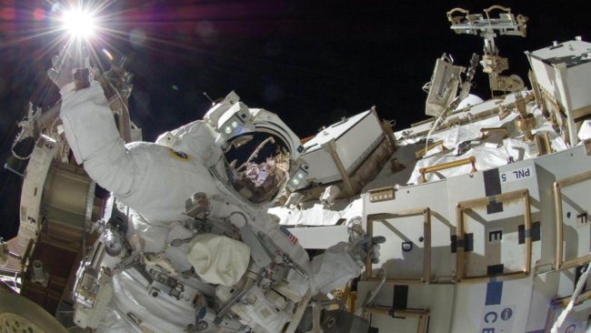 Можно ли создать идеального космонавта при помощи генной инженерии? (4 фото)
