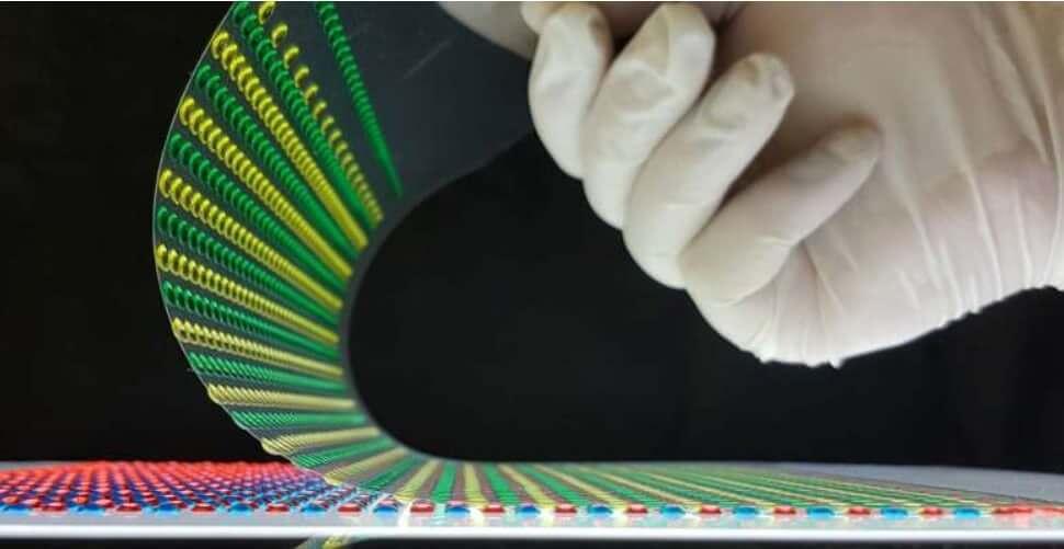 Электрический угорь вдохновил учёных на создание биологического источника энергии