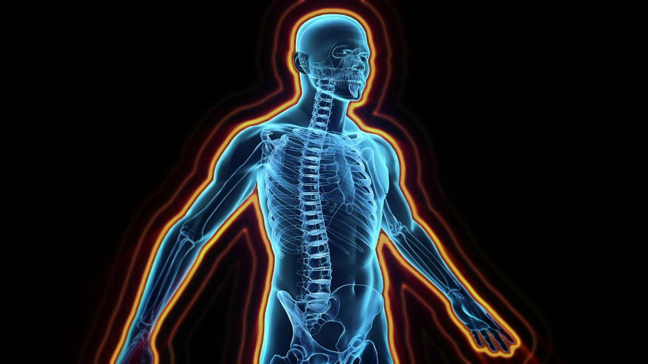 Компания Microsoft истартап Adaptive Biotechnologies расшифруют иммунитет человека