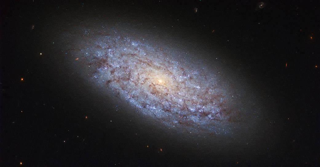Может ли темная материя породить «темную жизнь»? (2 фото)