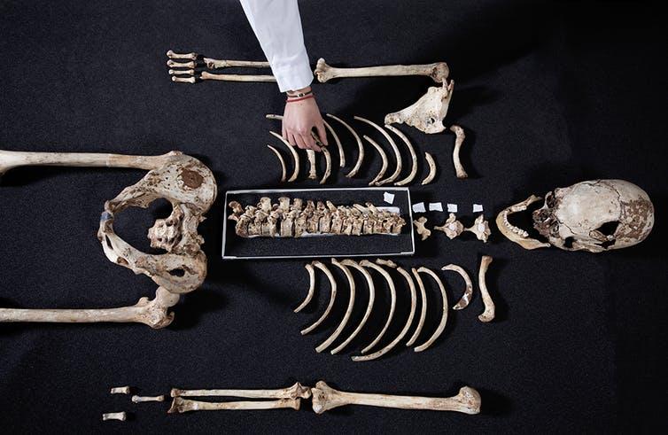 Пять удивительных фактов о наших предках, которые мы узнали из ДНК