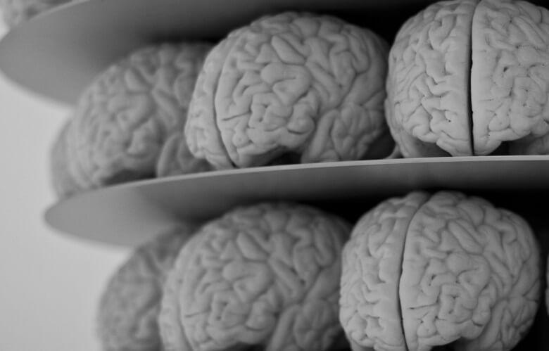 Представлены подтверждения связи между черепно-мозговыми травмами иболезнью Паркинсона