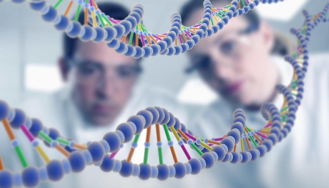Составлена первая трехмерная карта генома человека