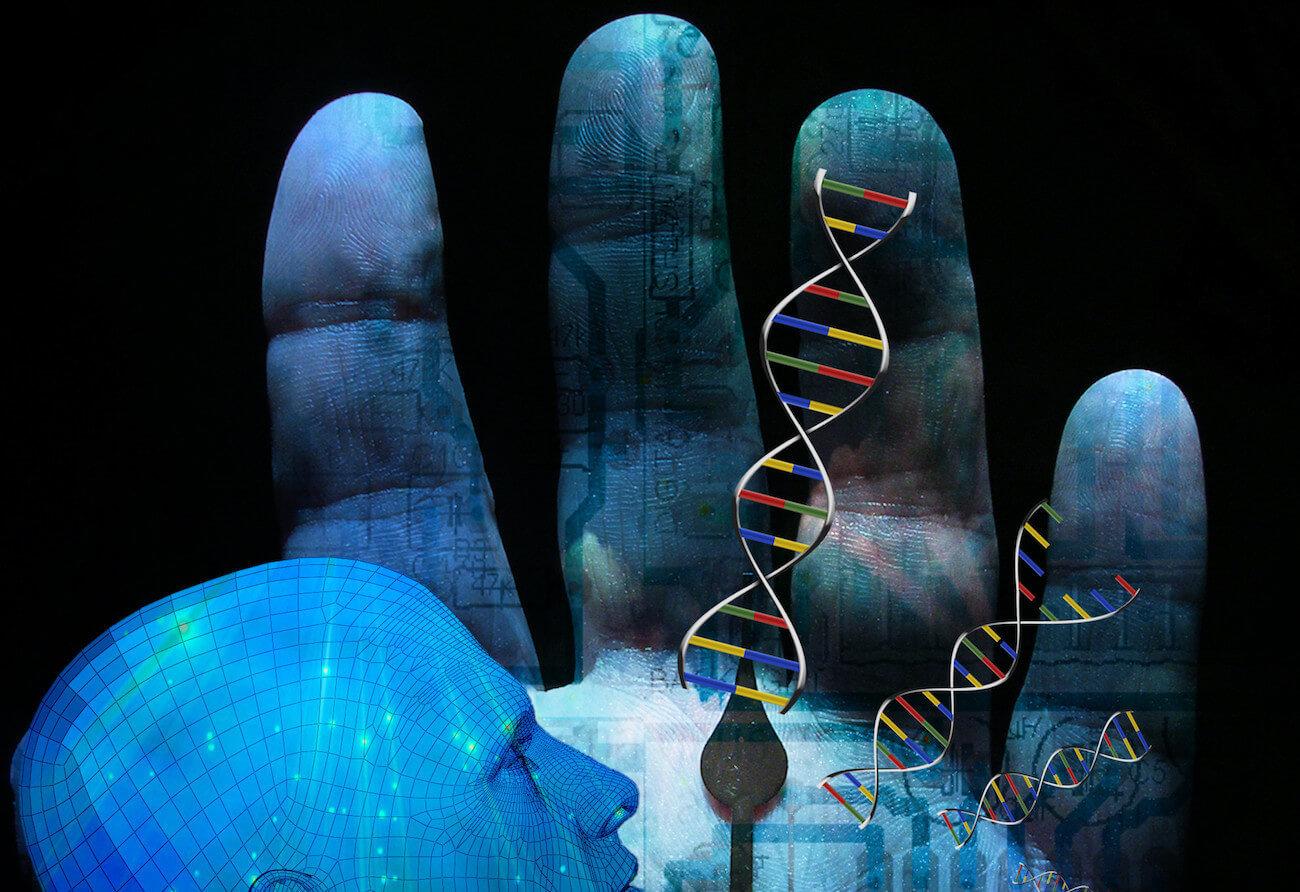 20 процентов человеческого генома оказались бесполезны. Как такое возможно?