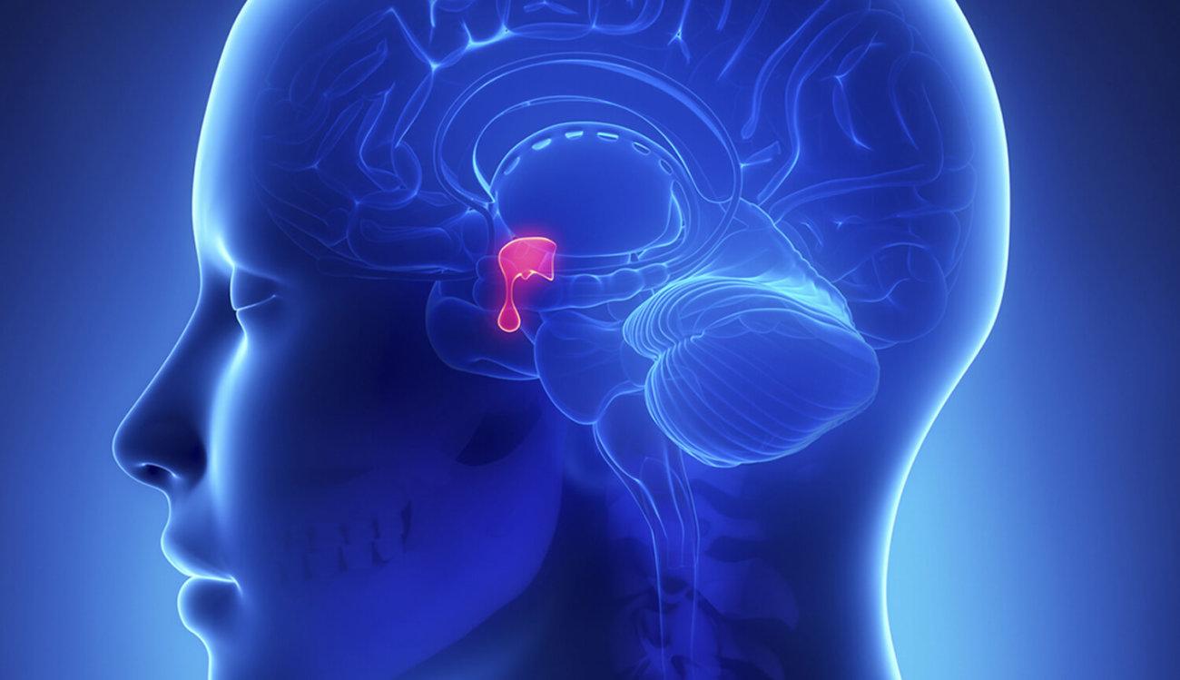 Ученые придумали имплантат для носа возвращающий людям обоняние