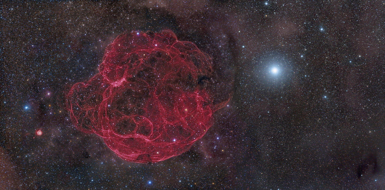 Вспышка сверхновой неподалеку могла уничтожить крупных животных миллионы лет назад