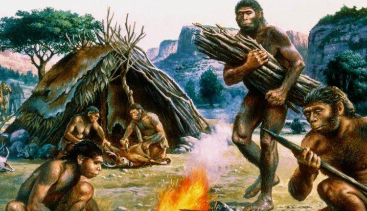 Художники неправильно изображали неандертальцев: найдены свидетельства об их прямой осанке
