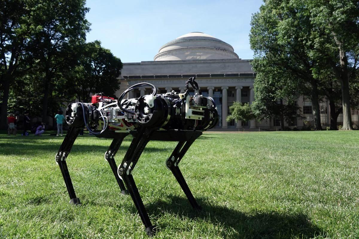 #видео | Робот Cheetah научился самостоятельно вставать и делать сальто назад