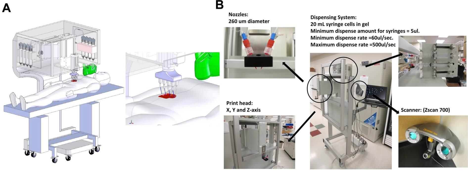 3D-принтер для печати кожи