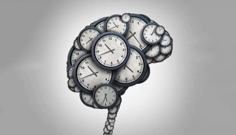 Время и мозг
