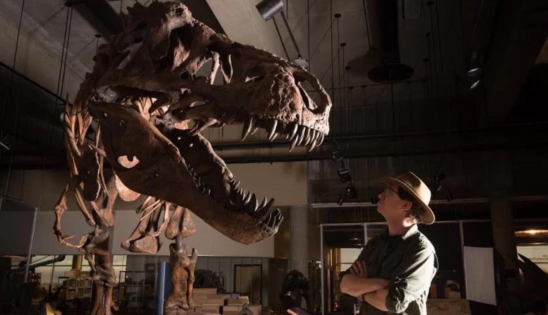 Тираннозавр «Скотти»