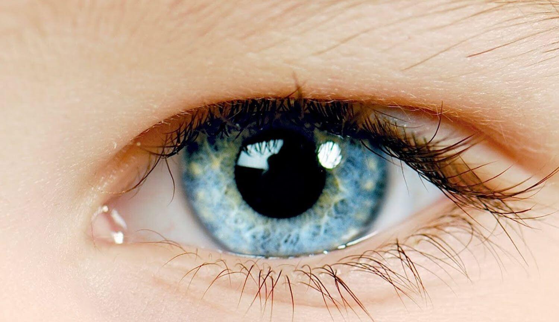 Слежение за движениями глаз