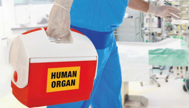 Орган для трансплантации