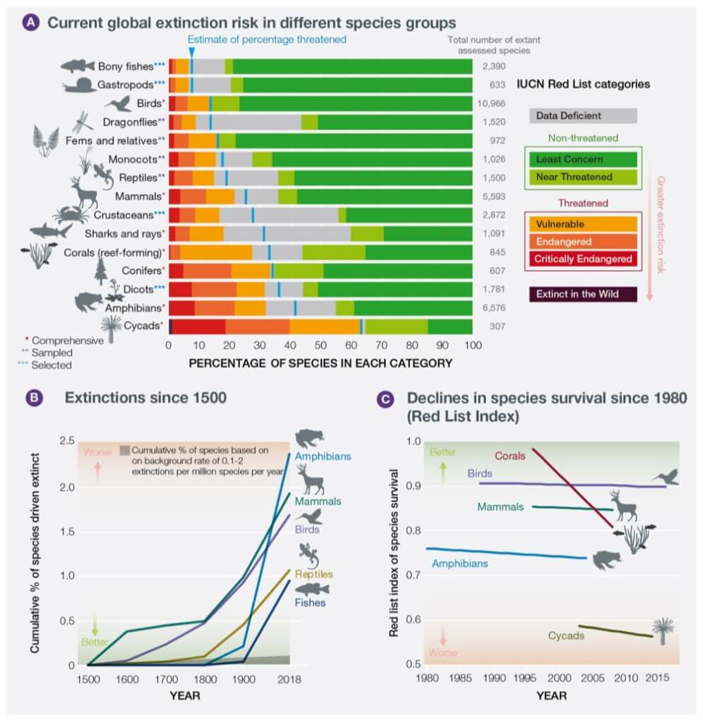 Новости высоких технологий: много мрачных прогнозов