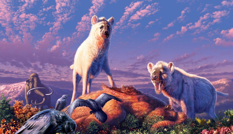 Палеонтологи изучили останки арктической гиены, жившей во времена мамонтов