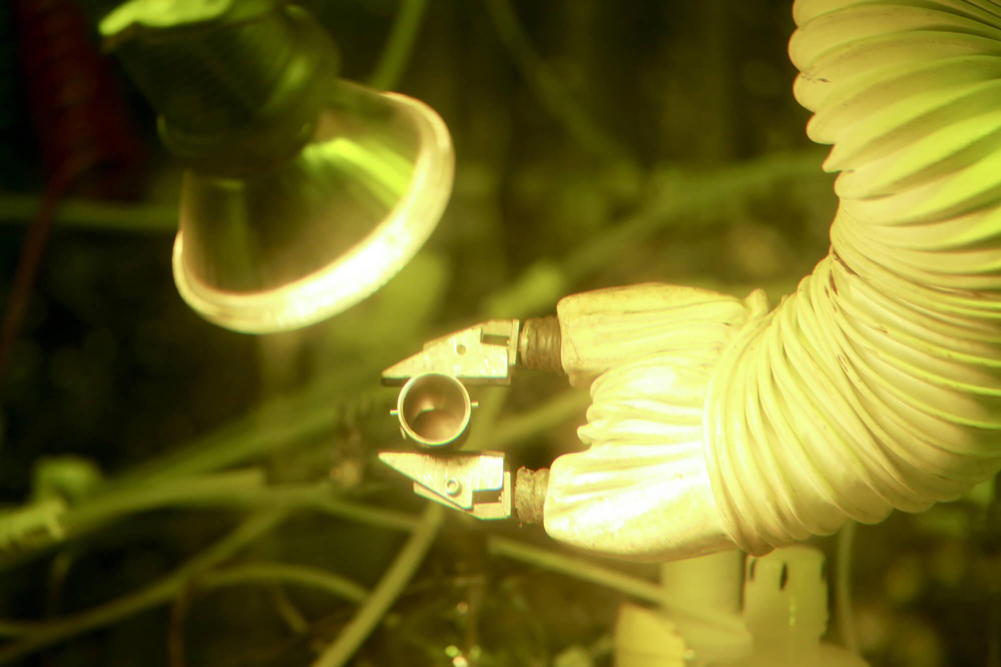 Ядерный реактор в груди: как работают кардиостимуляторы с вечной батарейкой?