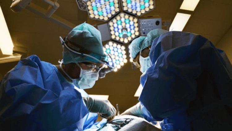 Открыт новый вид клеток, который может спасти тысячи жизней. И это не стволовые клетки