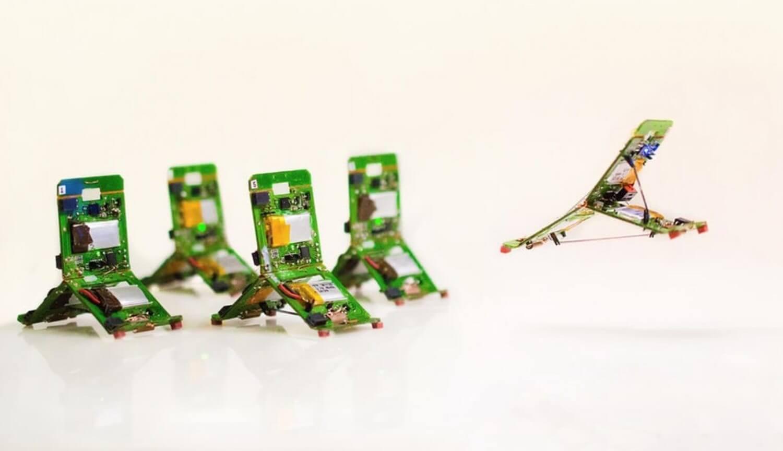 Жертвы катастроф будут спасены роботами, похожими на муравьев