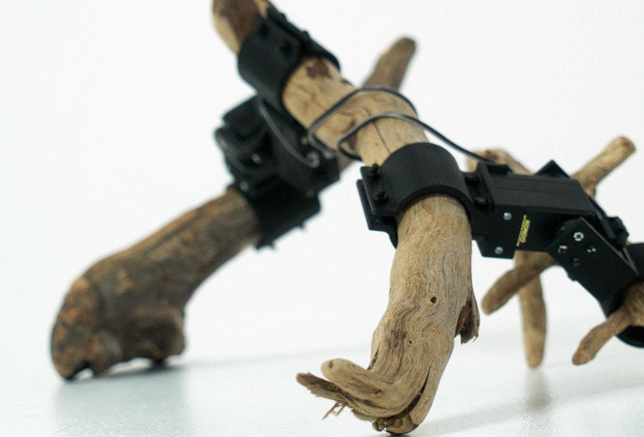 «Из нейросетей и палок»: как необычного робота научили ходить