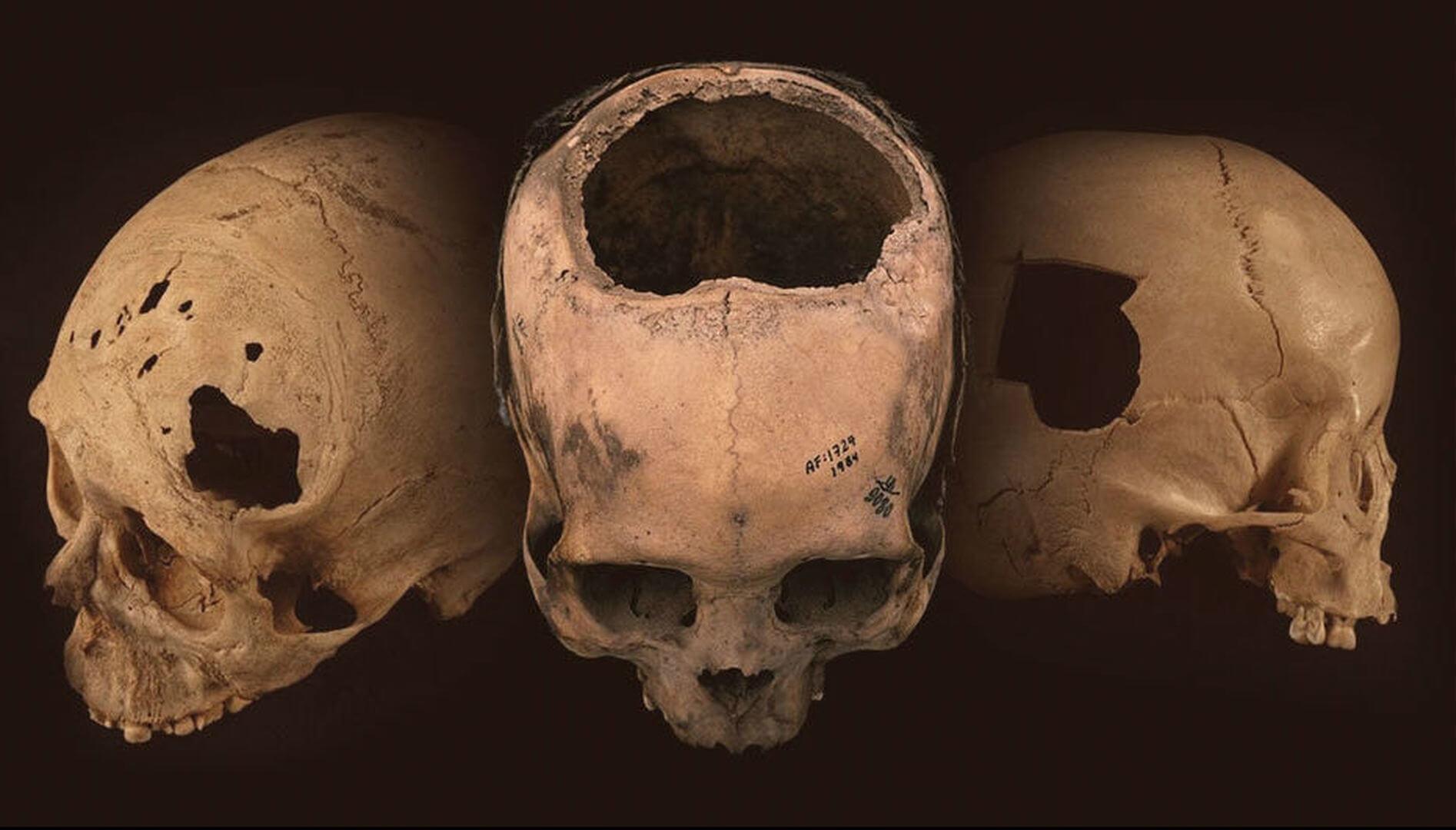 Почему древние инки отрубали врагам головы?
