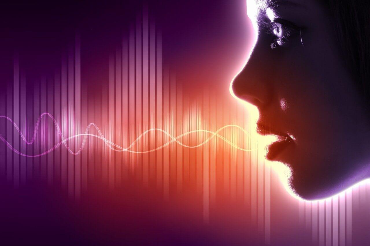 Из чего состоит звук