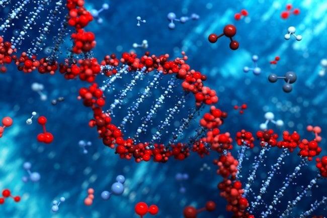 Можем ли мы раскрыть генетический код?   Hi-News.ru