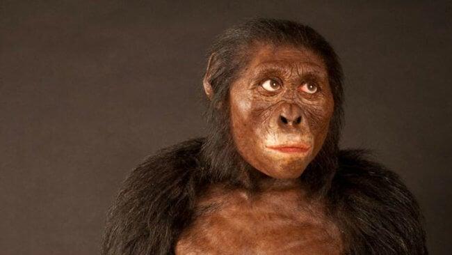 Почему роды в древности проходили намного легче? | Hi-News.ru