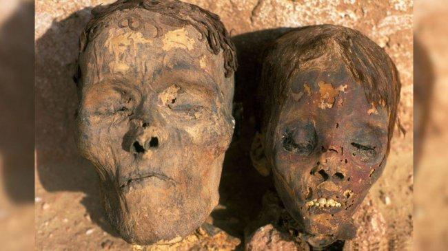 Ученые выявили наличие сердечно-сосудистых заболеваний у 4000-летних мумий   Hi-News.ru