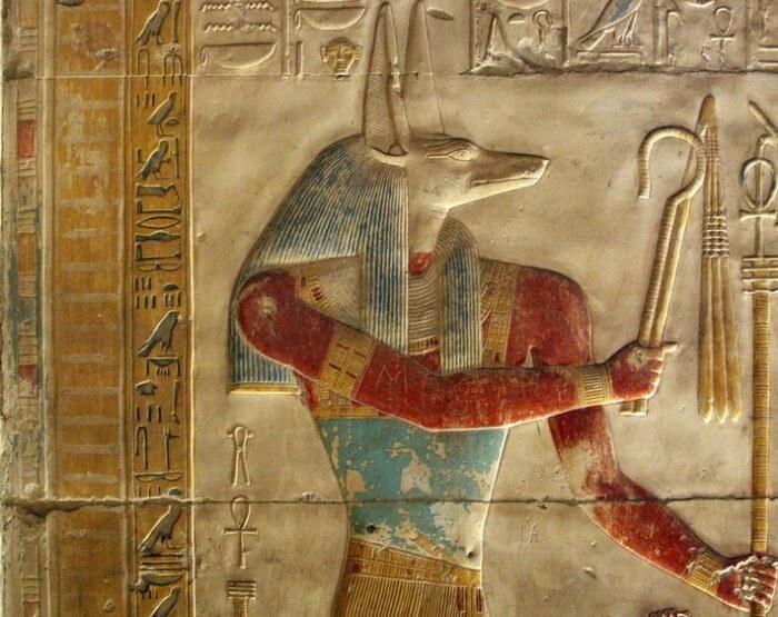 Зачем древние египтяне мумифицировали миллионы птиц?
