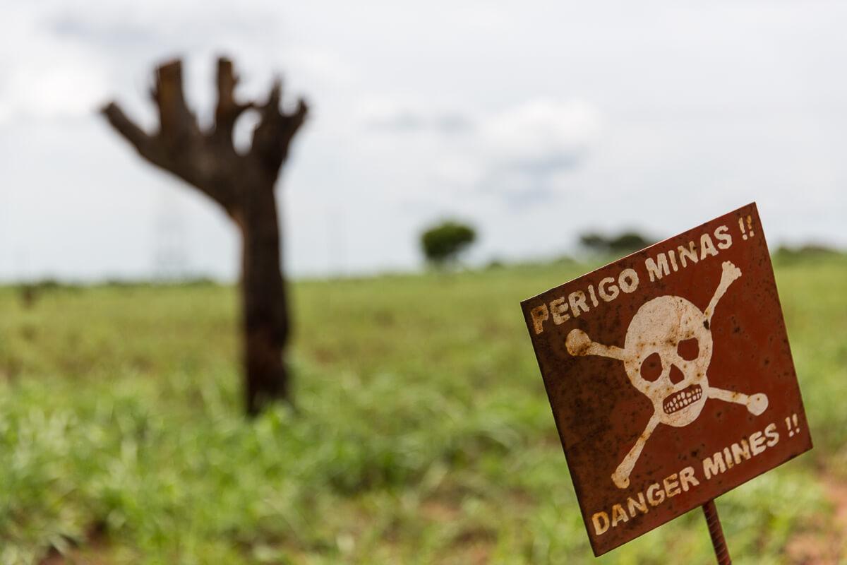 военные сша искать мины помощи бактерий