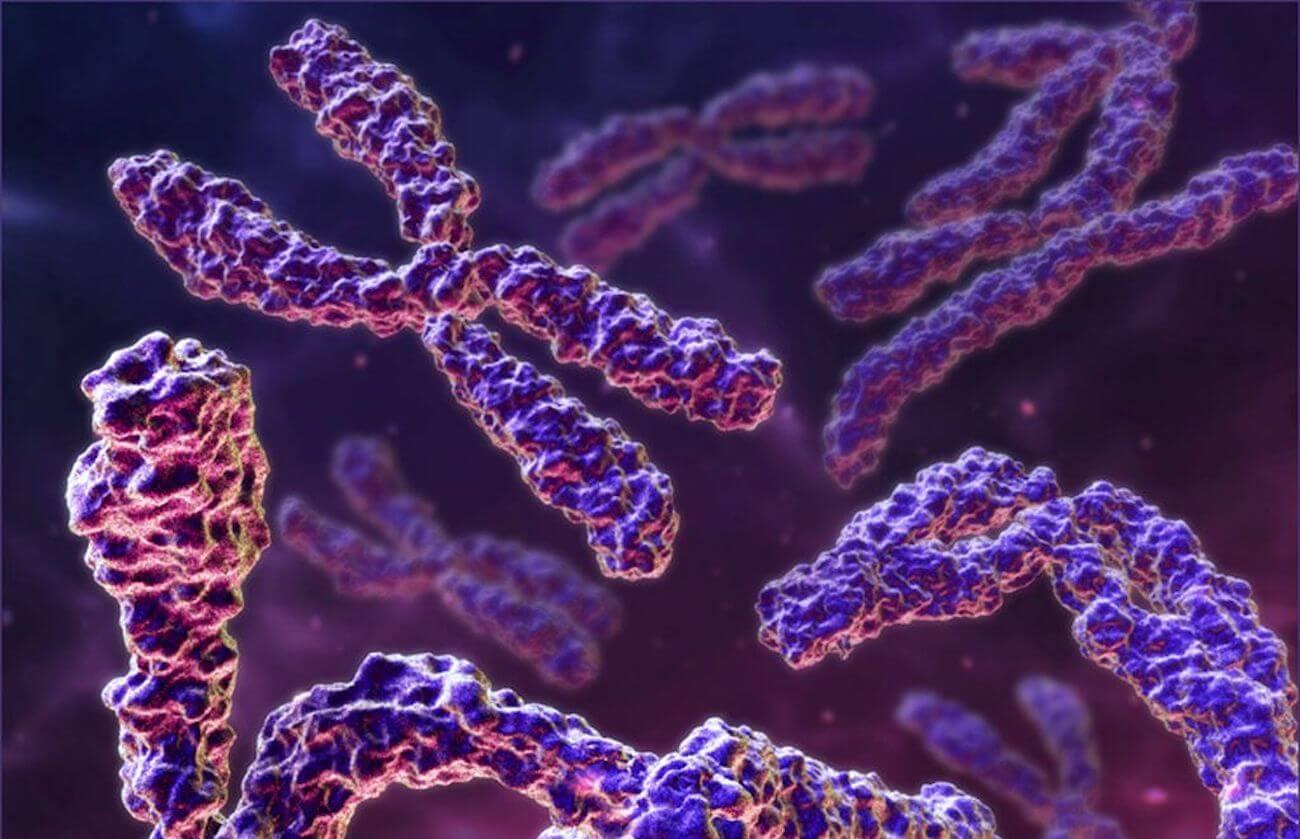Ученые обратили вспять нарушения, связанные с синдромом Дауна