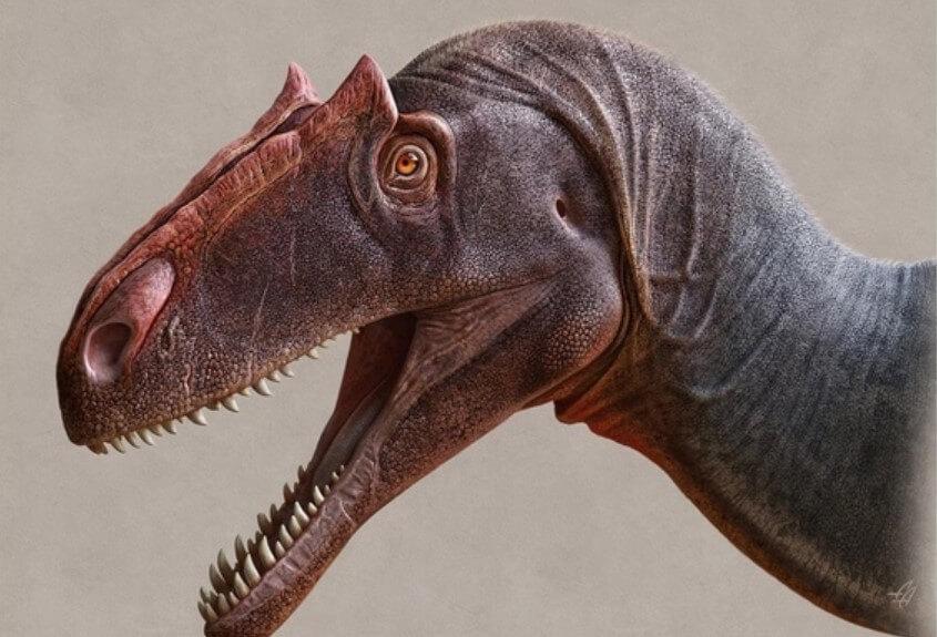 Открыт новый динозавр, который был опаснее тираннозавра-рекса