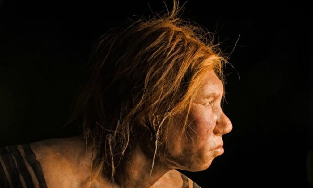 Почему ученые так уверены, что неандертальцы были опытными пловцами?