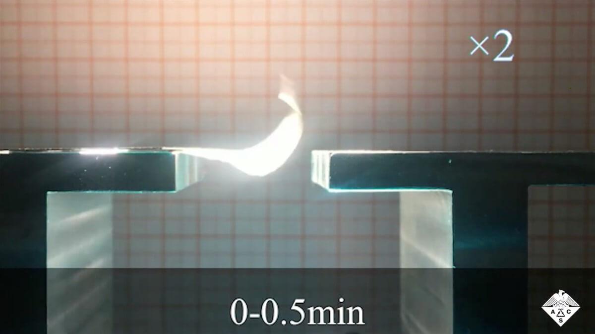 Созданы крылья для роботов-насекомых, работающие только на энергии солнца