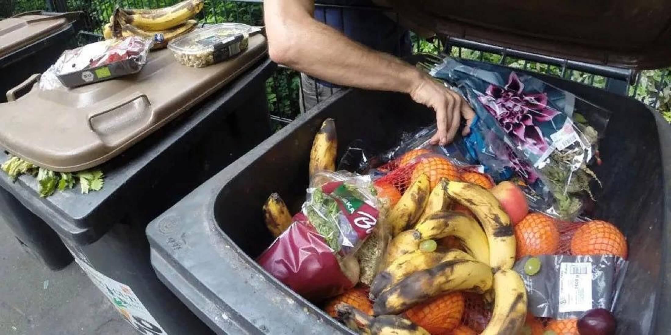 Сколько продуктов питания выбрасывают люди?