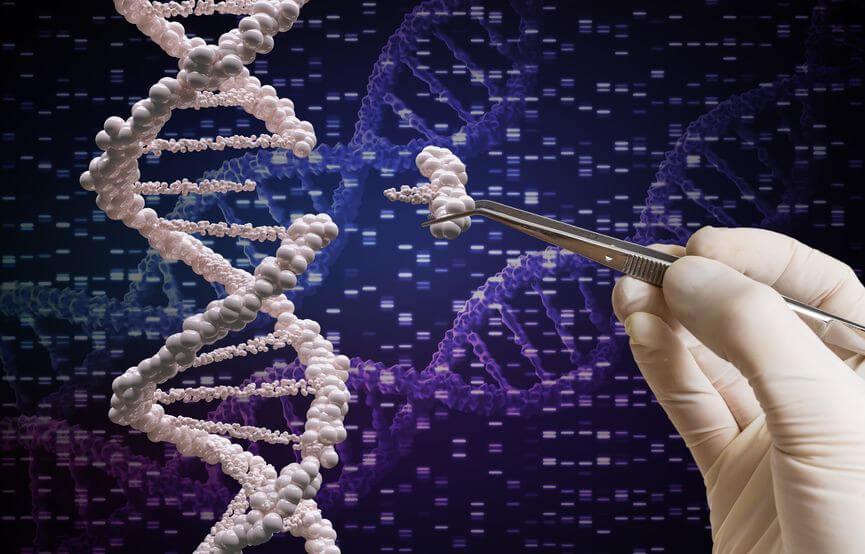 ученым удалось вылечить слепоту помощи технологии генного редактирования
