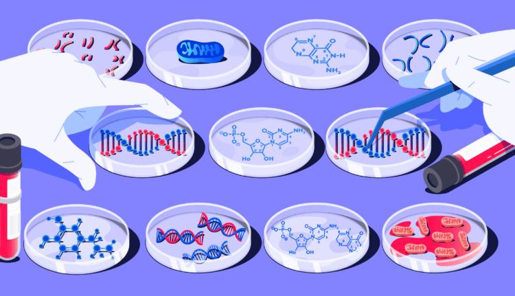 Что такое тест ДНК, как его делают и для чего он нужен?
