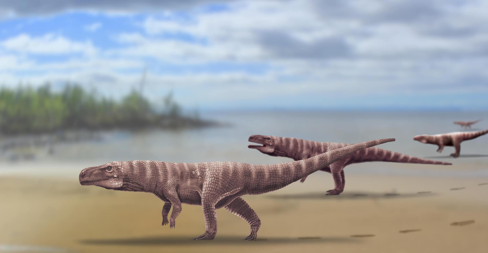 Миллионы лет назад предки крокодилов ходили на двух ногах
