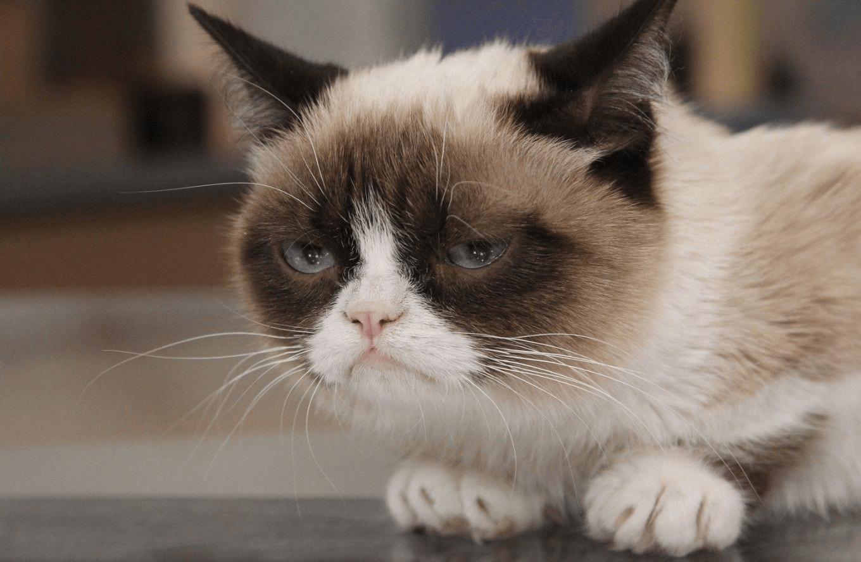 Научное объяснение: как грусть приводит к слабоумию?