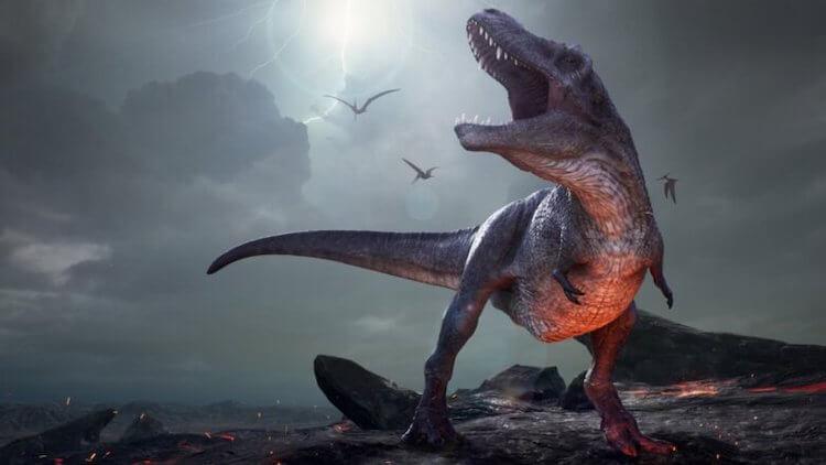 Где сейчас живут потомки динозавров и что они могут дать ученым
